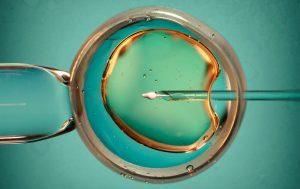 IVF Behandling Statistik